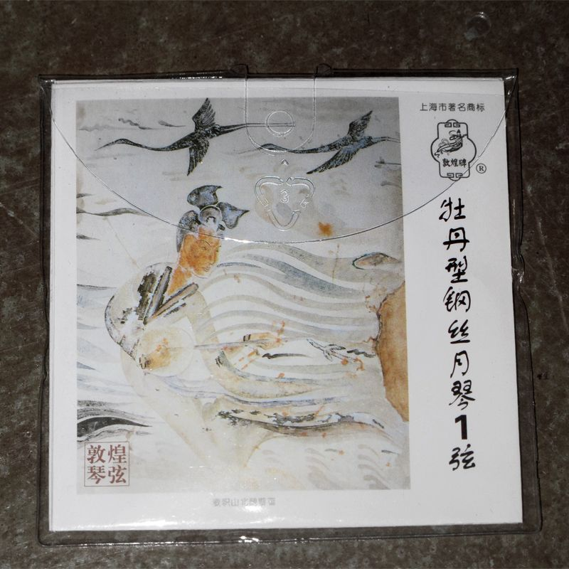 Individual String for Dunhuang YueQin