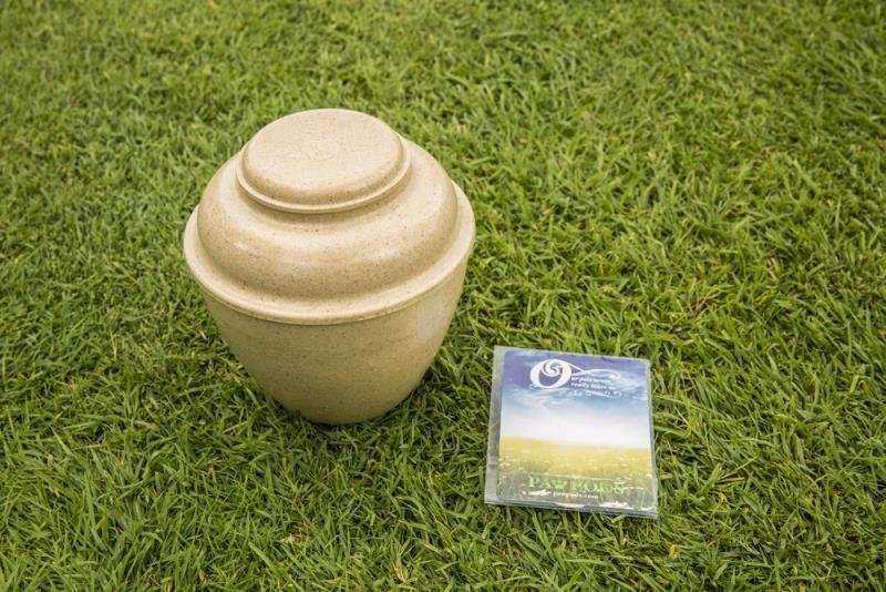 Large Urn (Biodegradable) by Paw Pods