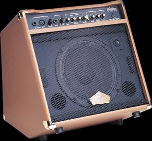 Washburn 30 watt Amp